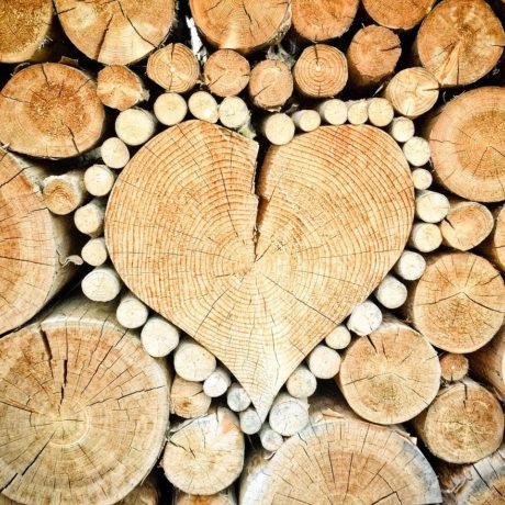 この木なんの木?お家の木材あれこれ!